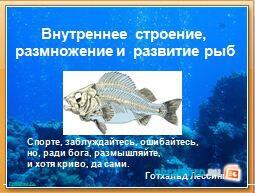Внутреннее строение и размножение рыб