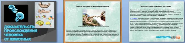 Слайды презентации: Доказательства происхождения человека от животных