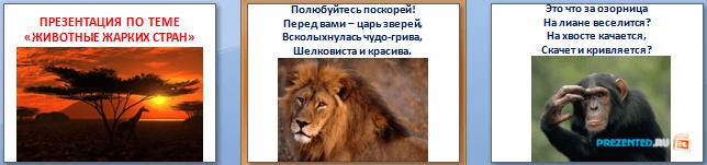 Слайды презентации: Животные жарких стран