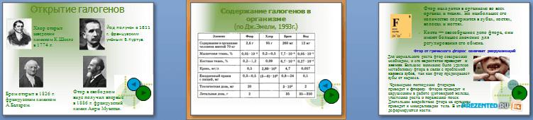 Слайды презентации: Галогены в организме человека