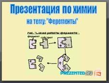 Ферменты. Роль и функции