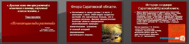 Слайды презентации: Исчезающие виды растений