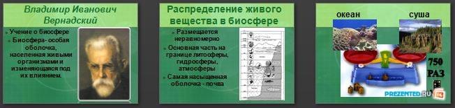 Слайды презентации: Роль биосферы в природе