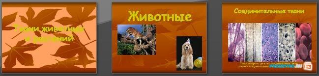 Слайды презентации: Ткани животных и растений
