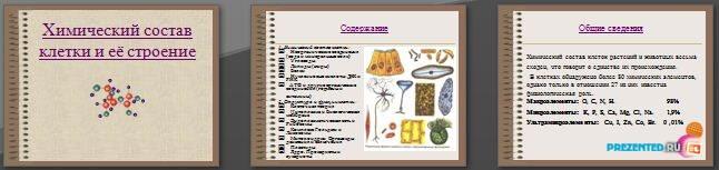 Слайды презентации: Химический состав клетки и её строение