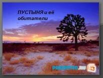Пустыня и ее обитатели