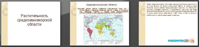 Слайды презентации: Растительность средиземноморья