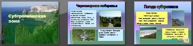 Слайды презентации: Субтропическая зона