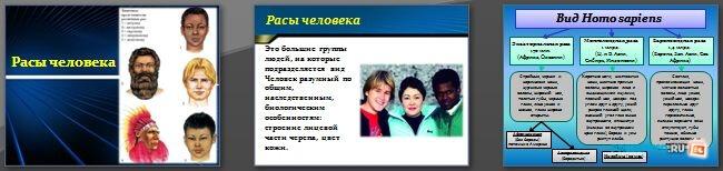 Слайды презентации: Расы человека
