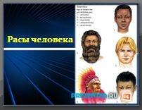 Расы человека