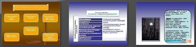 Слайды презентации: Общие принципы и методы научного познания