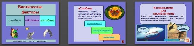 Слайды презентации: Биотические факторы
