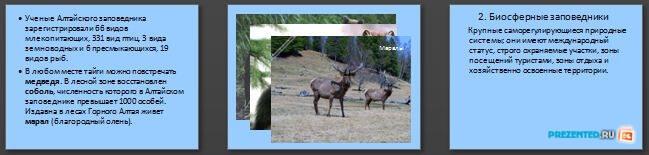 Слайды презентации: Охрана и рациональное использование животного мира