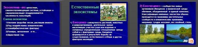 Слайды презентации: Различные экосистемы