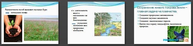 Слайды презентации: Экологические законы природопользования
