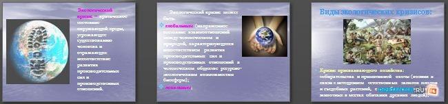 Слайды презентации: Экологические кризисы и экологические катастрофы