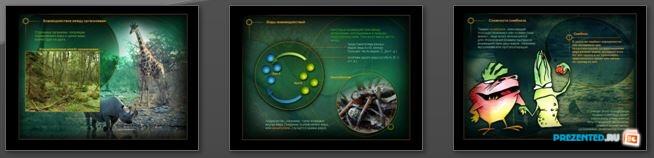 Слайды презентации: Взаимоотношения между организмами