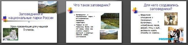 Слайды презентации: Заповедники и национальные парки России