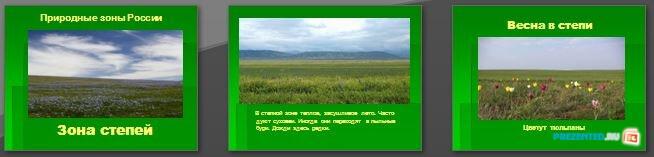 Слайды презентации: Зона степей. Природные зоны России