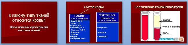 Слайды презентации: Внутренняя среда организма