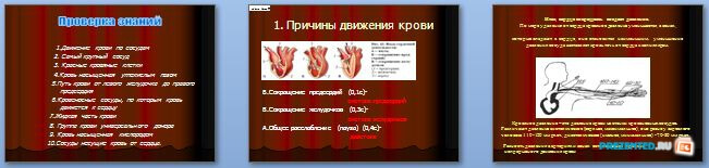 Слайды презентации: Движение крови по сосудам