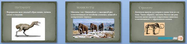 Слайды презентации: Животные прошлого