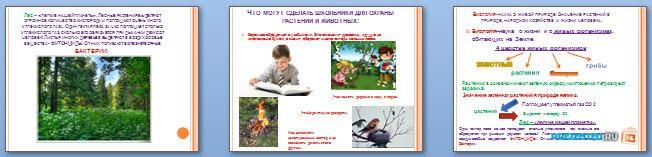 Слайды презентации: Биология - наука о живой природе