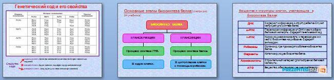 Слайды презентации: Биосинтез белка