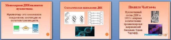 Слайды презентации: Нуклеиновые кислоты