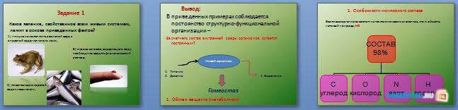 Слайды презентации: Общие свойства живых организмов