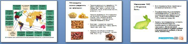 Слайды презентации: ГМО и ГМИ