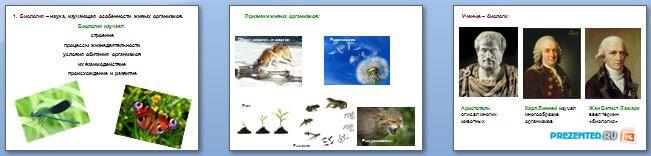 Слайды презентации: Царство Растения