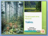Природная зона России - Тайга