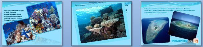 Слайды презентации: Большой барьерный риф