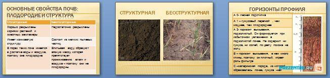 Слайды презентации: Образование почв и их разнообразие
