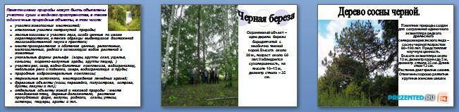 Слайды презентации: Памятники природы Мордовии