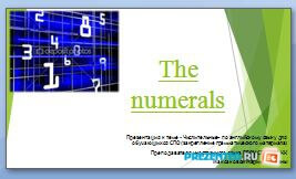 Числительные (The numerals)