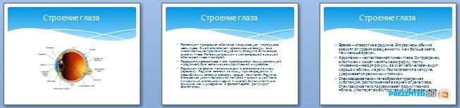 Слайды презентации: Острота зрения