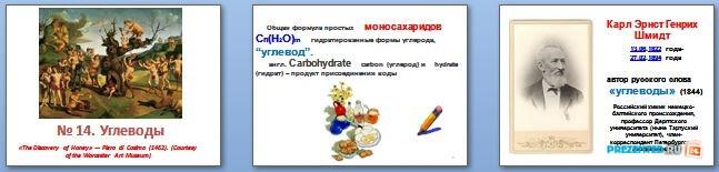 Слайды презентации: Биополимеры и их структурные компоненты