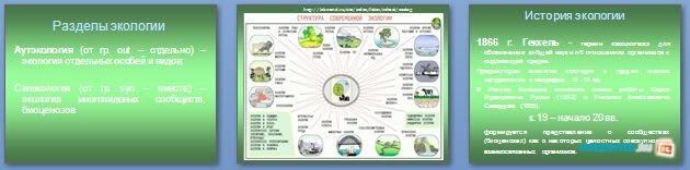 Слайды презентации: Что изучает современная экология